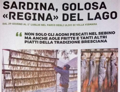 Sardina, Golosa Regina del Lago